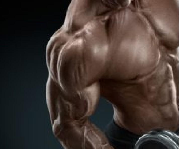 Best Steroids For Bulking